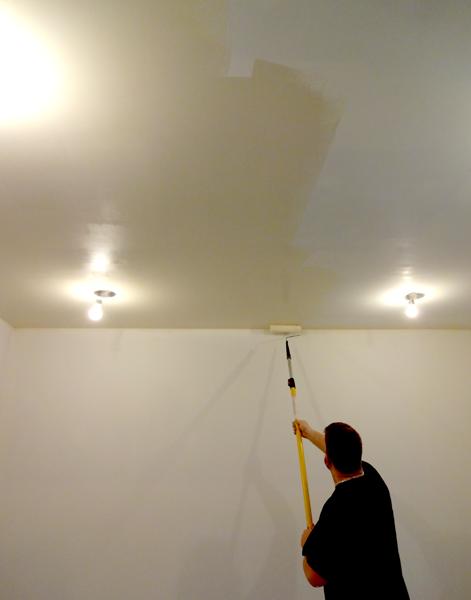 matt painting ceiling.png