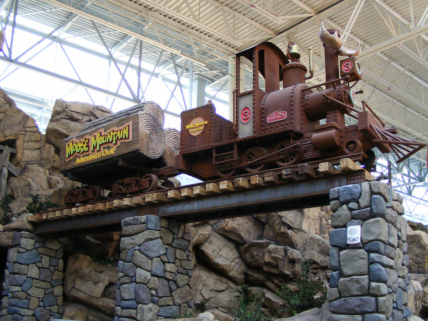 Moose Mountain train