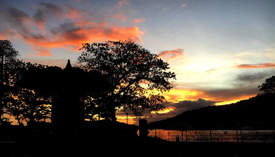 park sunset 1.png