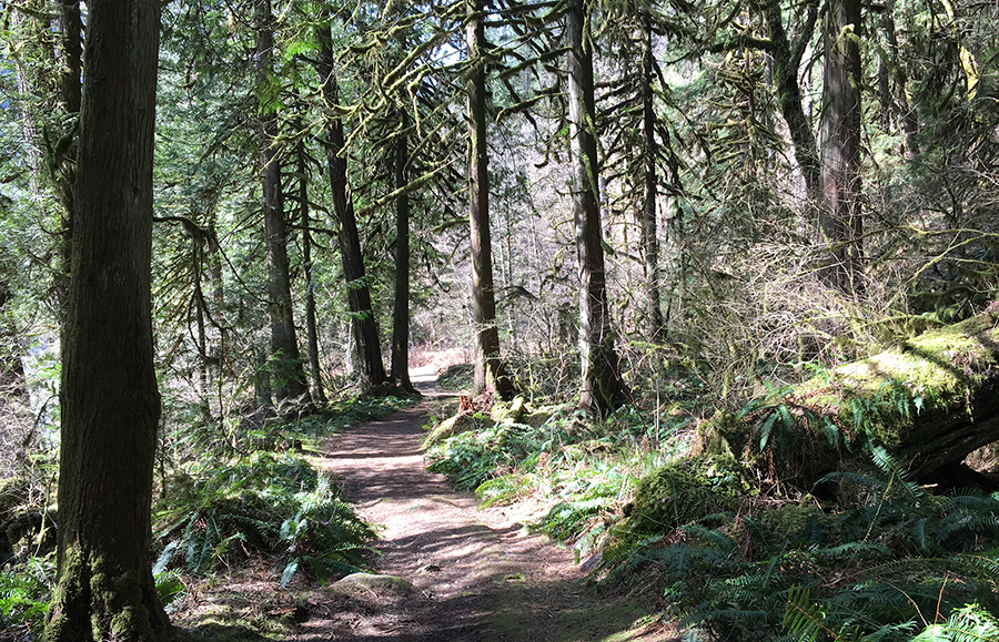 othello lower trail.jpg