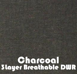 Charcoal3L.jpg