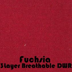 Fuchsia3L.jpg