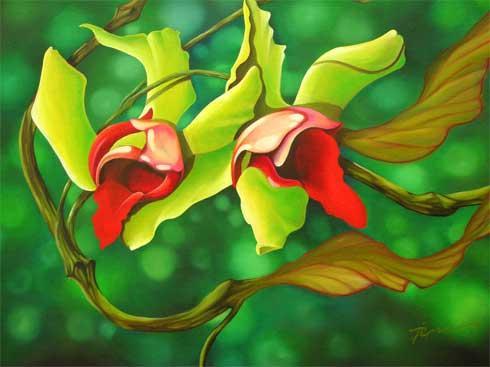 orchidias3.jpg