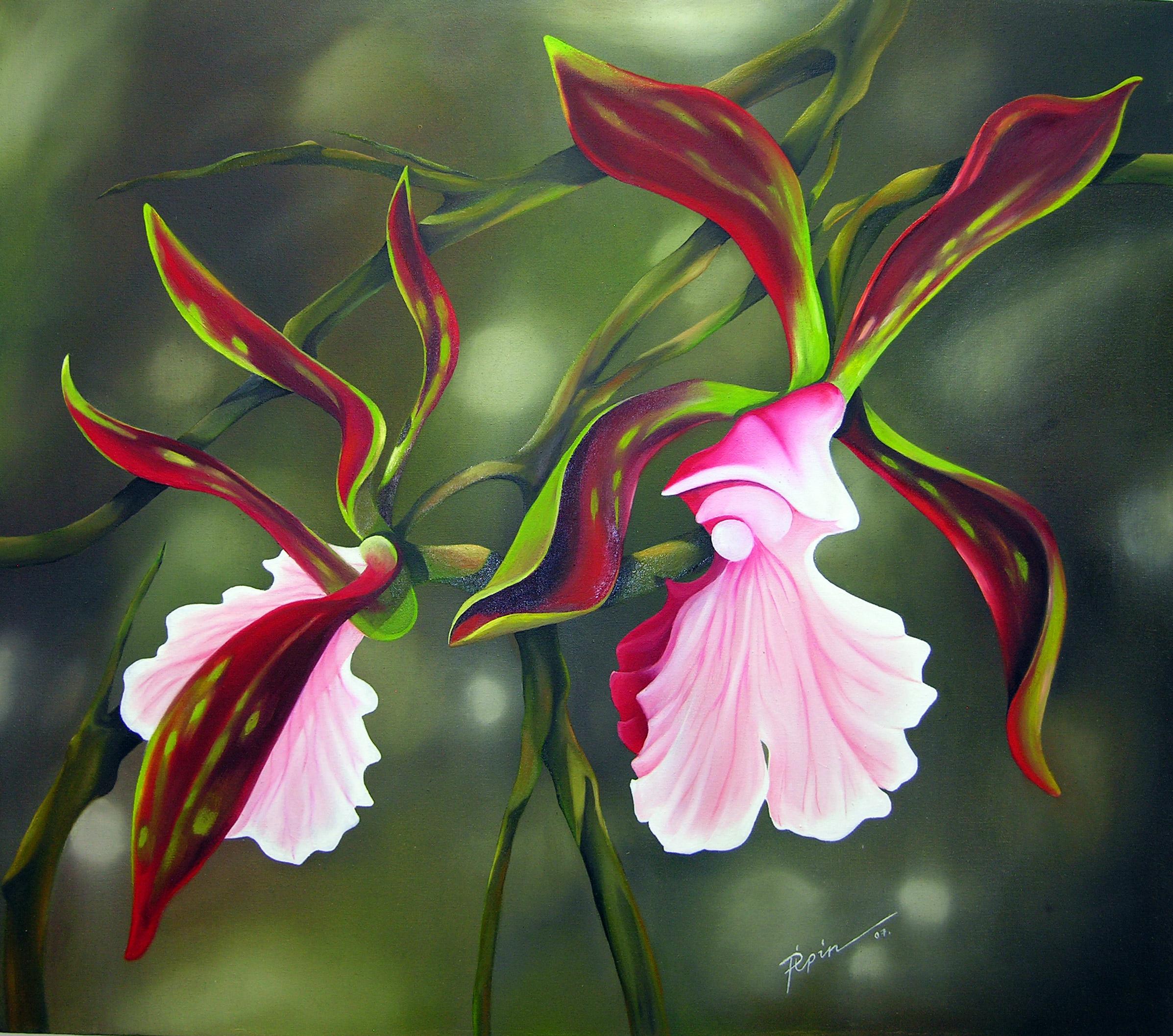 Orchidia7.jpg