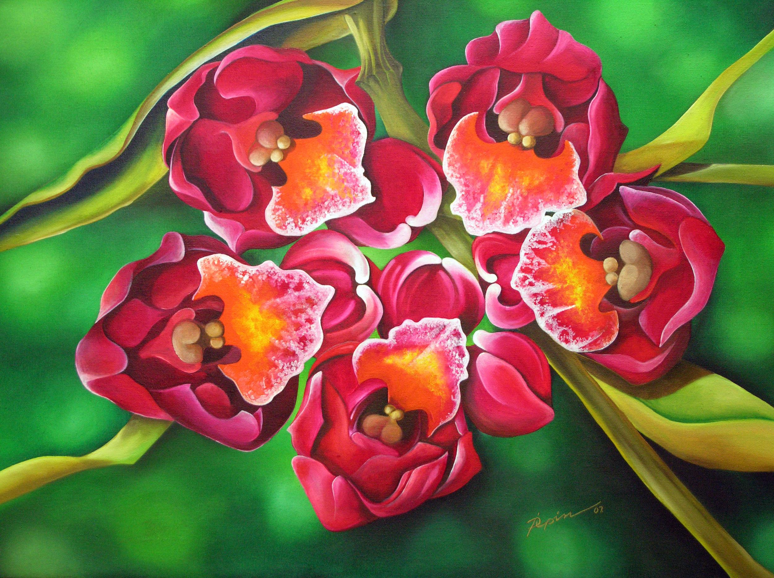 orchidias2B.jpg