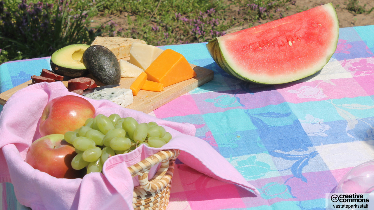 picnic2016-1280 x 720.001.jpeg