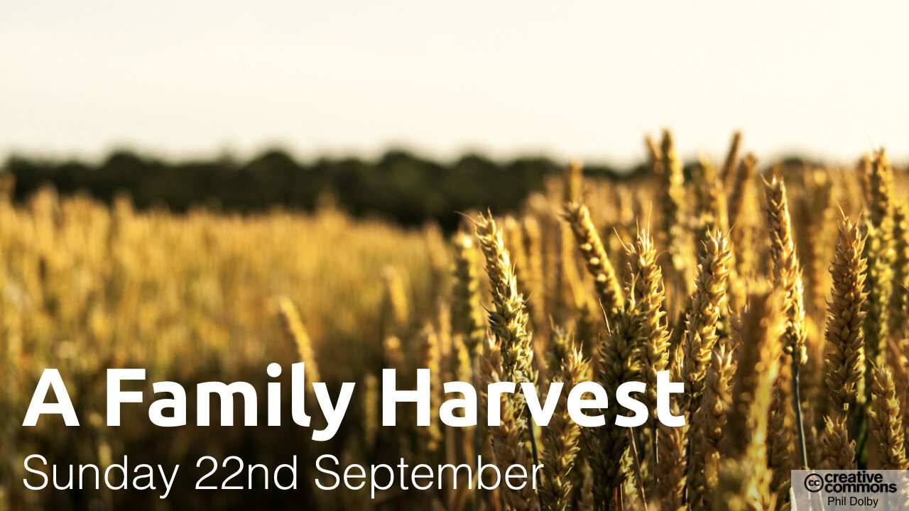 Harvest-2019-1280 x 720.002.jpeg