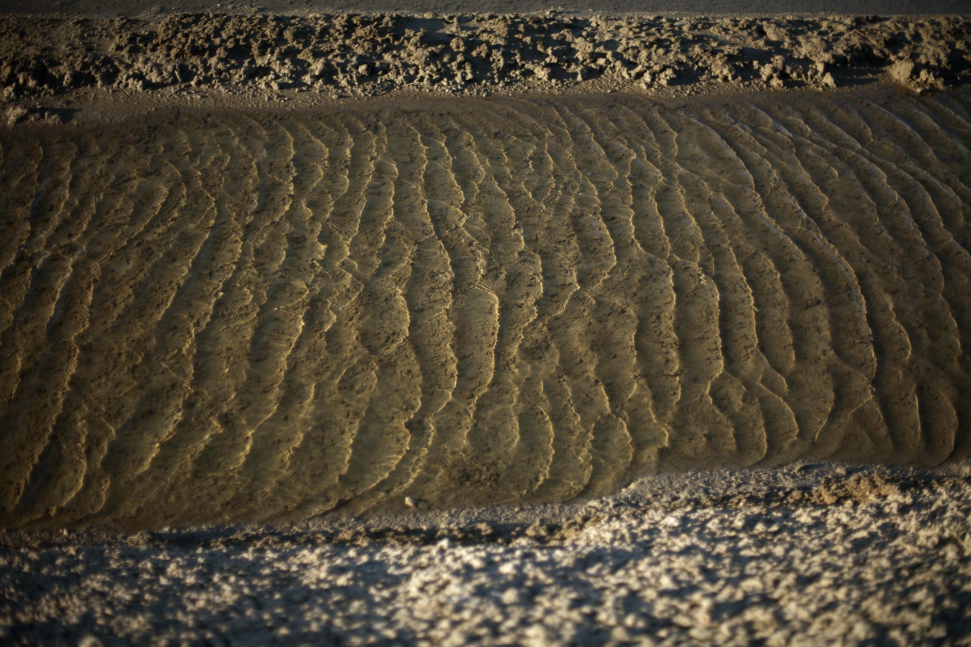 16/8/12 Loix: Emmanuel Mercier's salt fields outside the village of Loix, �le de R�.