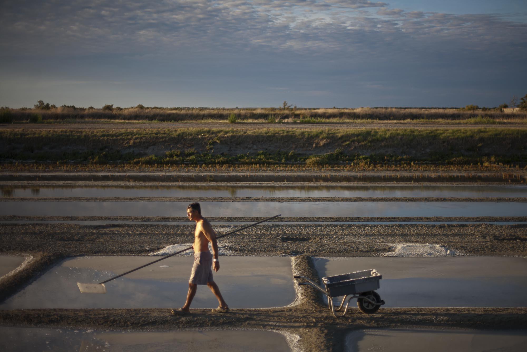 16/8/12 Loix: Emmanuel Mercier working on his salt fields outside the village of Loix, Ile de Re.