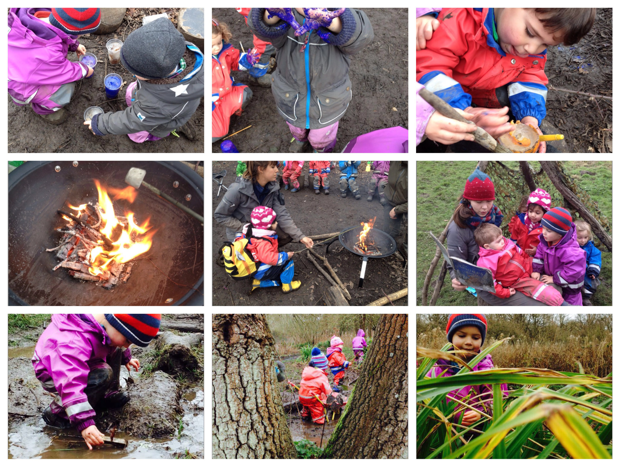 Campfire, play and stories under the trees in the forest