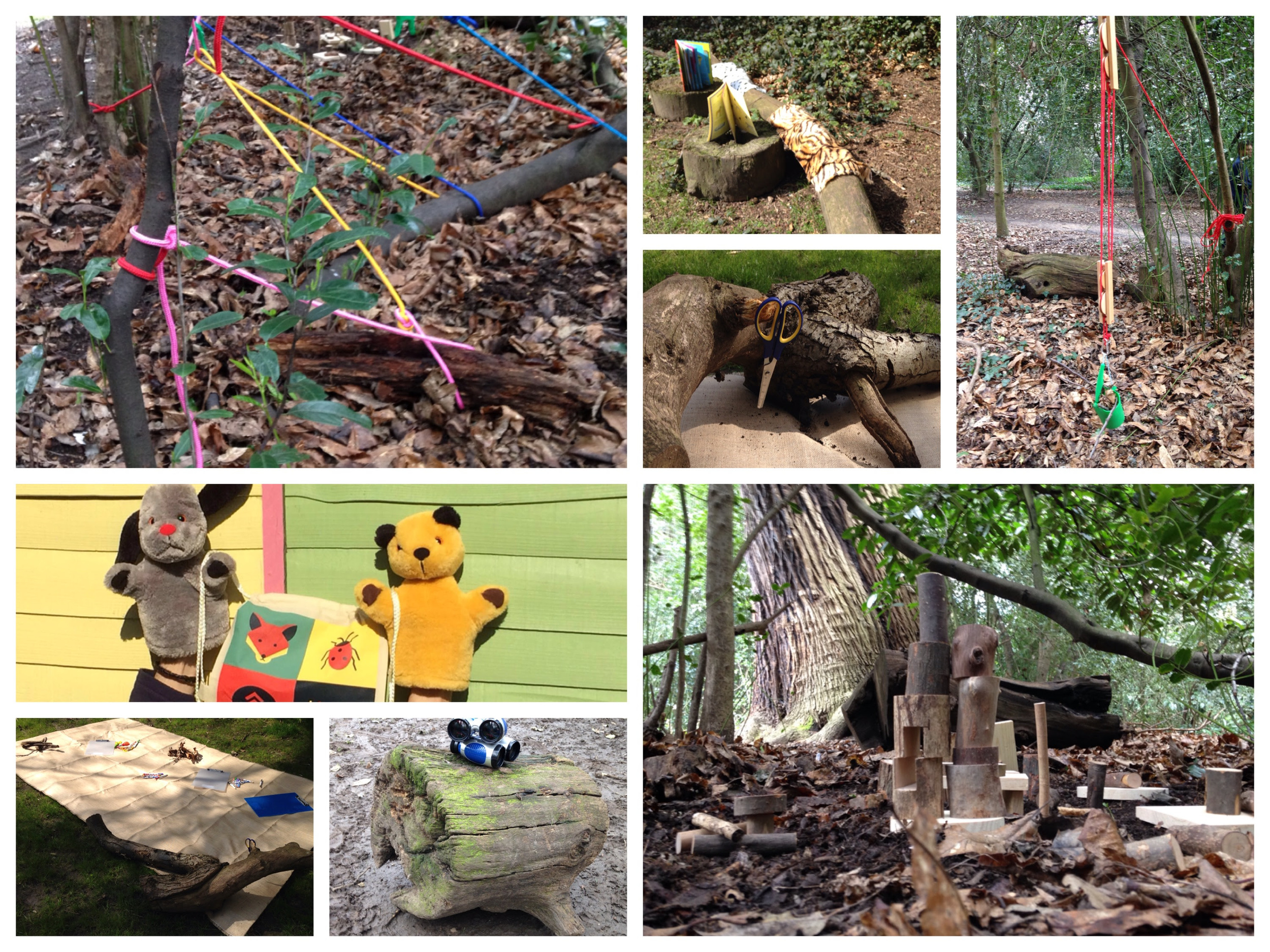 The Big Little Forest Folk had a lot of fun today scoping the site