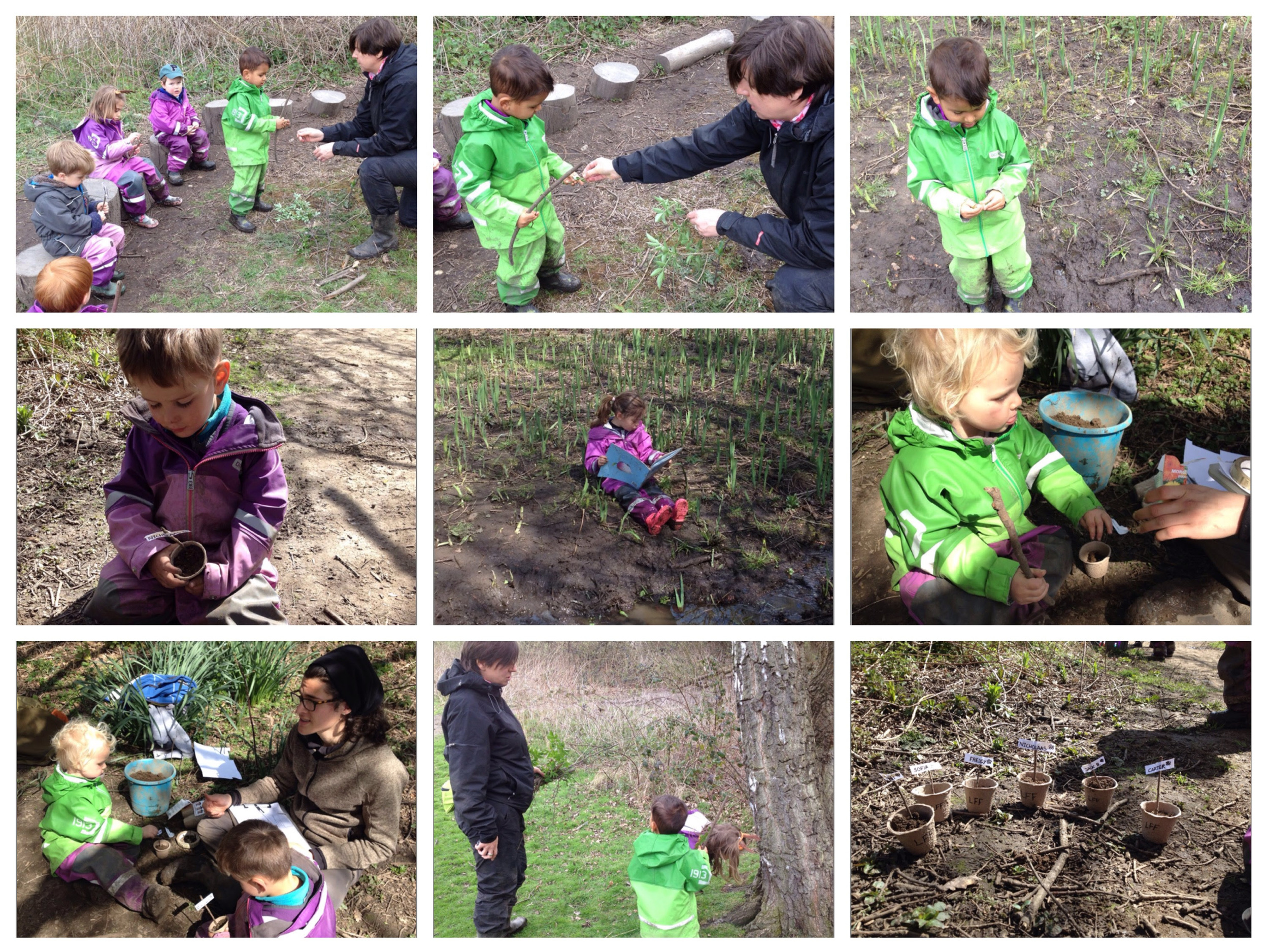 Learning more about growth in the forest