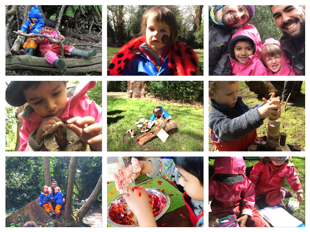 Mini beast discoveries in the forest