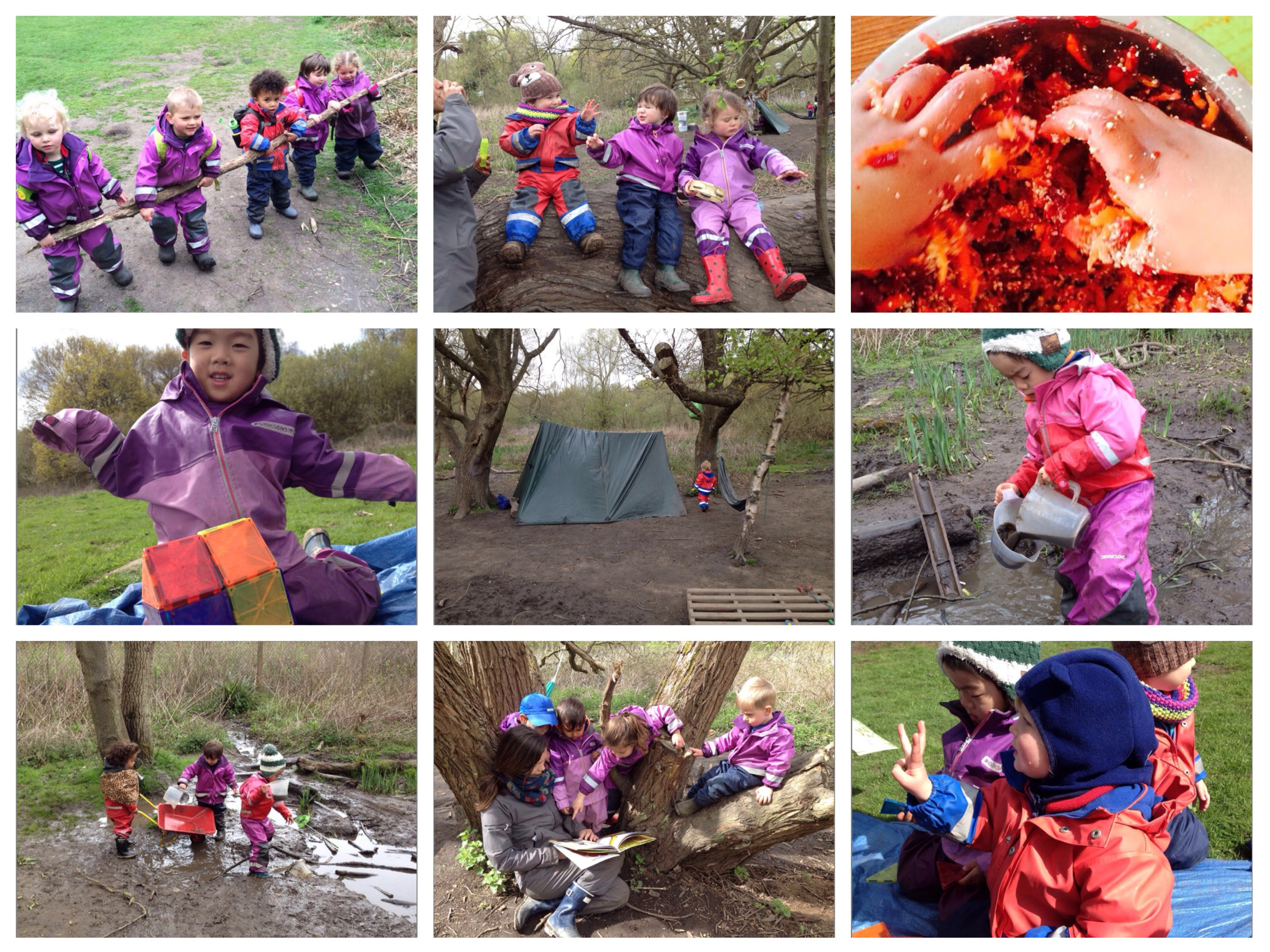 Exploring the wider nature reserve