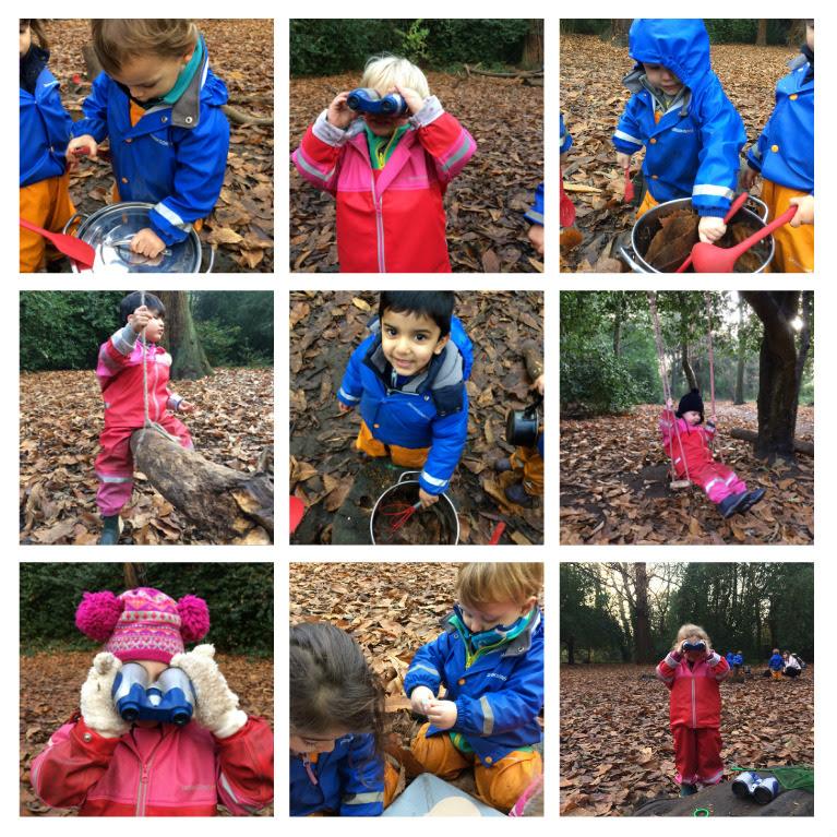 Busy Little Forest Folk