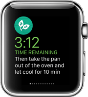 Apple Watch glances Vivid agency