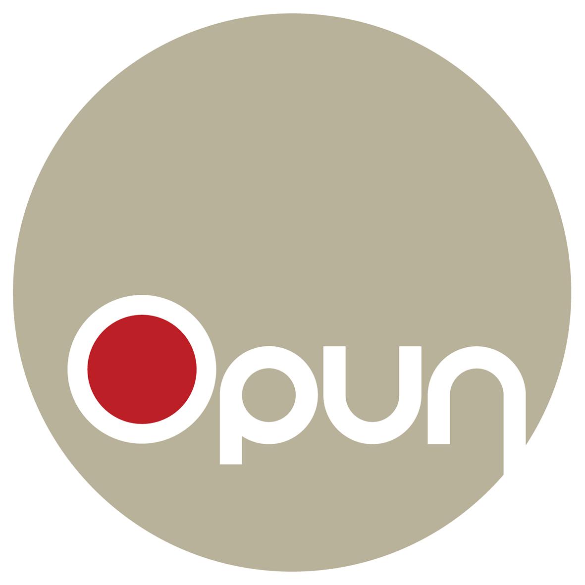 Vivid Content Marketing Opun home improvements logo