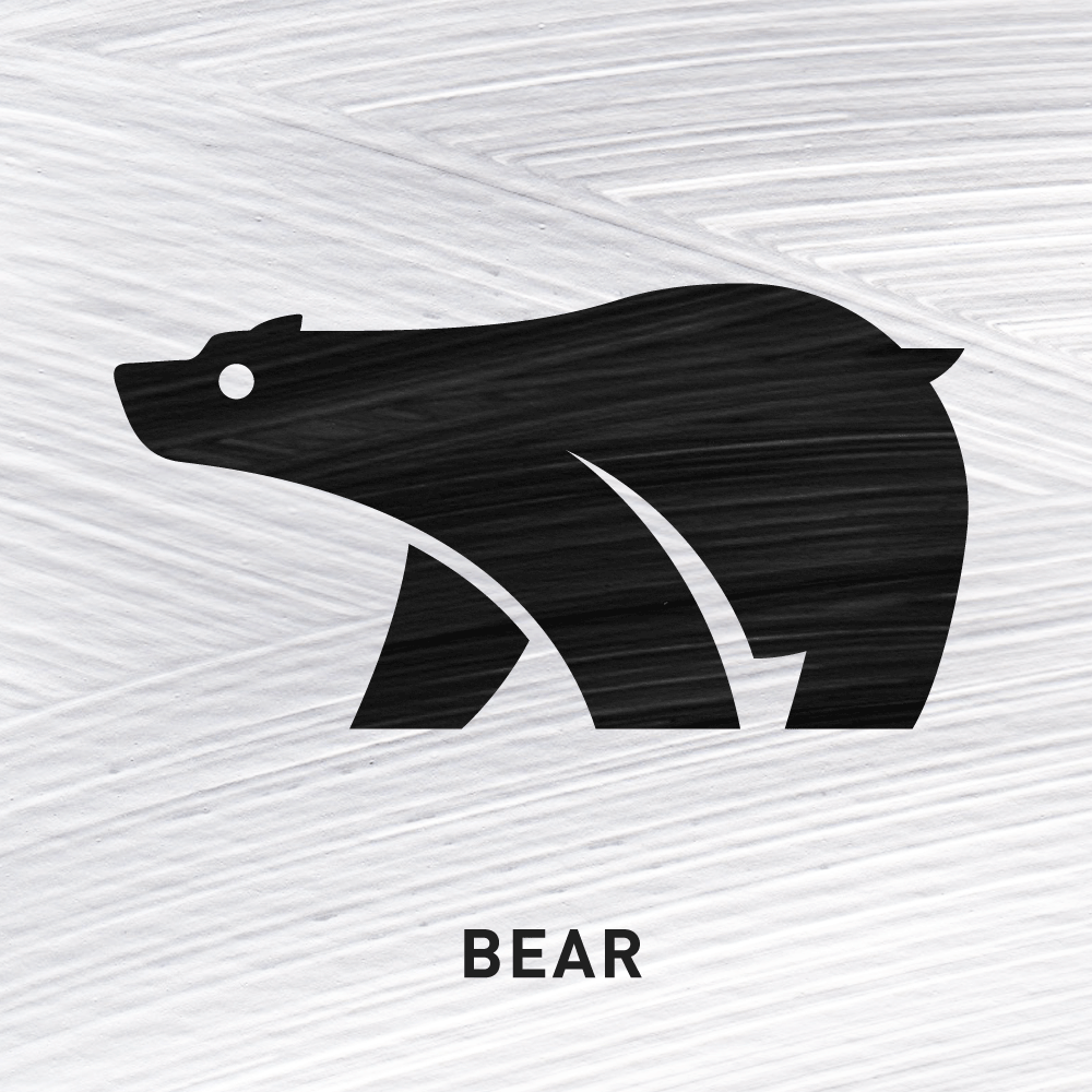 Bear Fierce Protection