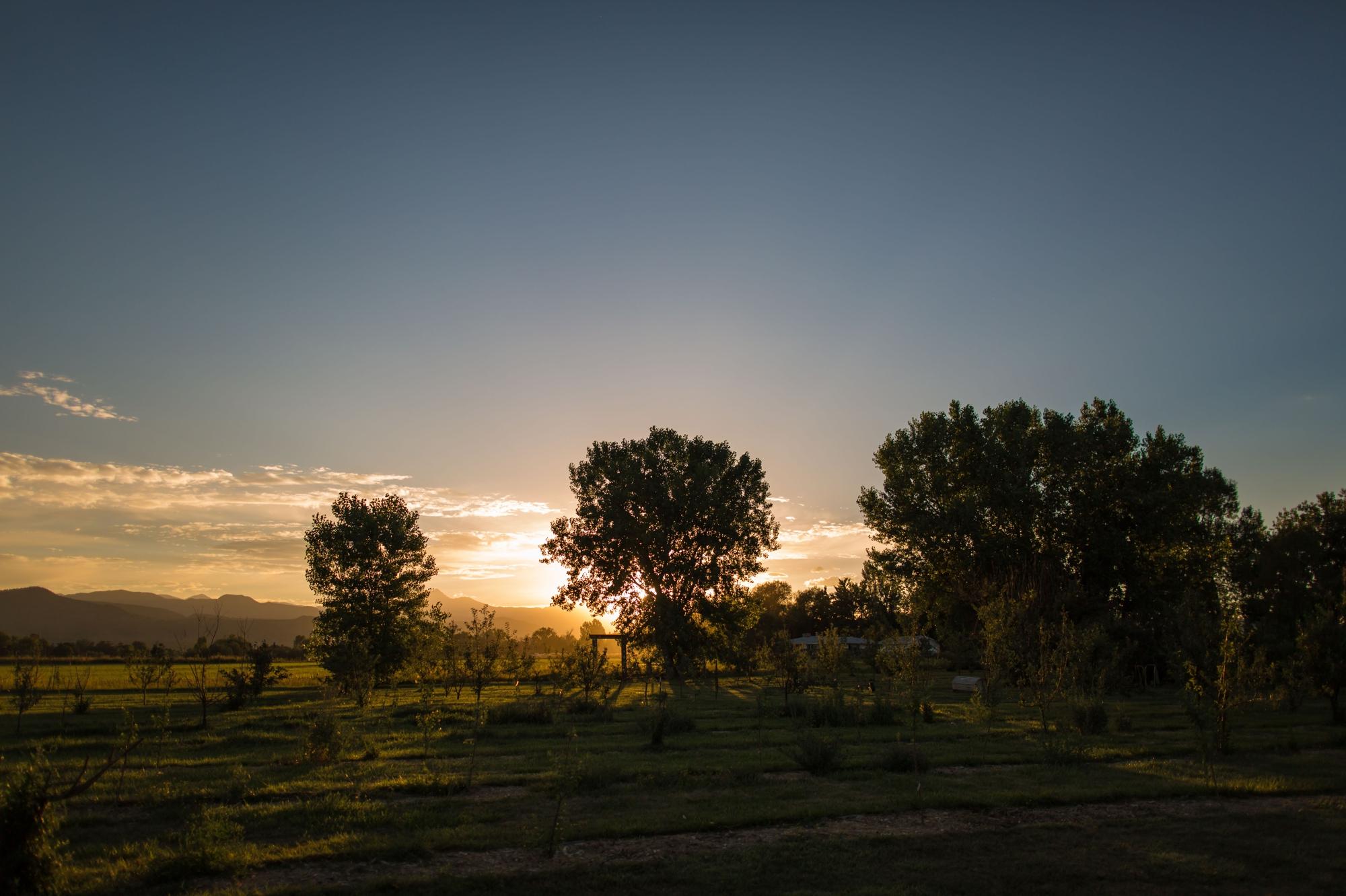 Gorgeous Ya Ya Farm & Orchard sunset!