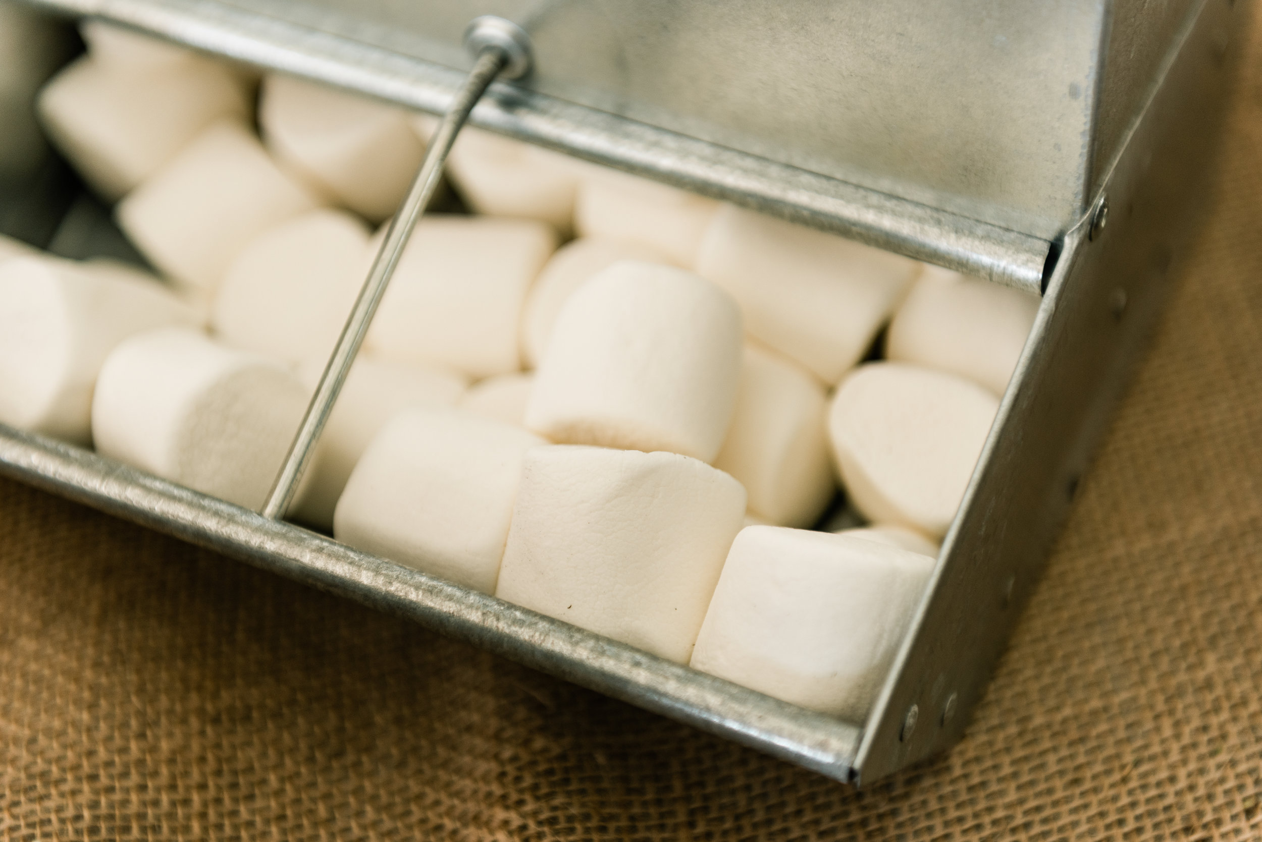 s'mores bar marshmallows