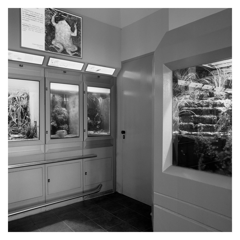 berlin_zoo_aquarium_105.jpg