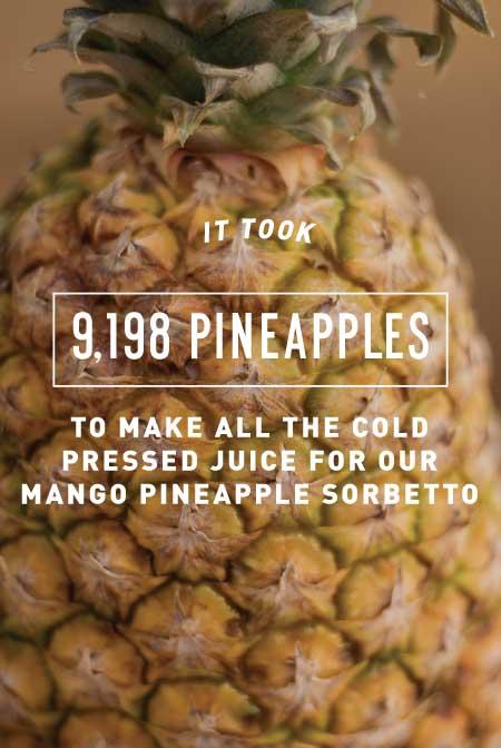 pineapples-update.jpg