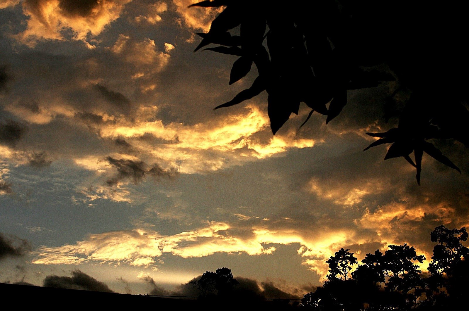 07 Skies 1