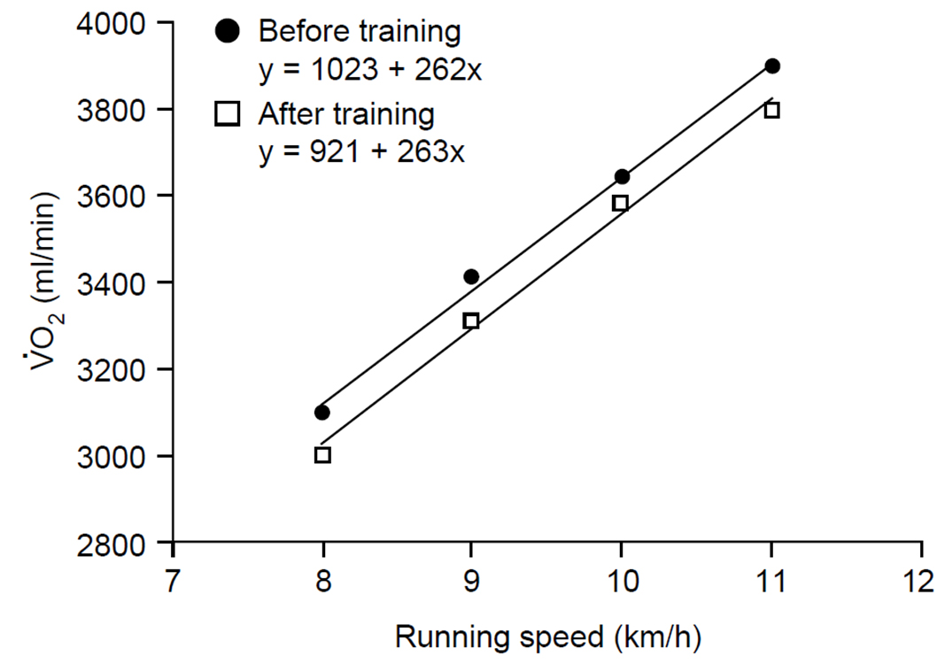 Figure 2. Changes in the oxygen used for running various speeds in human athletes, before and after 6 weeks of endurance training. From Jones, A. & Carter, H. (2000) The effect of endurance training on parameters of aerobic fitness. Sports Medicine, 29, 373–386.