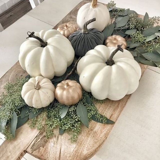 I'm really trying not to rush summer away,  because I do love the warm long days and sitting out in the evenings drinking Lacroix . But,  autumn in Colorado is pretty dang magical 😍 🍂 🍁  #pumpkins #fall #autumn #whitepumpkins #interiordesigner #coloradohomes #modernfarmhouse  #designersofinsta #coloradointeriordesign  #cozy #falldecor #decor