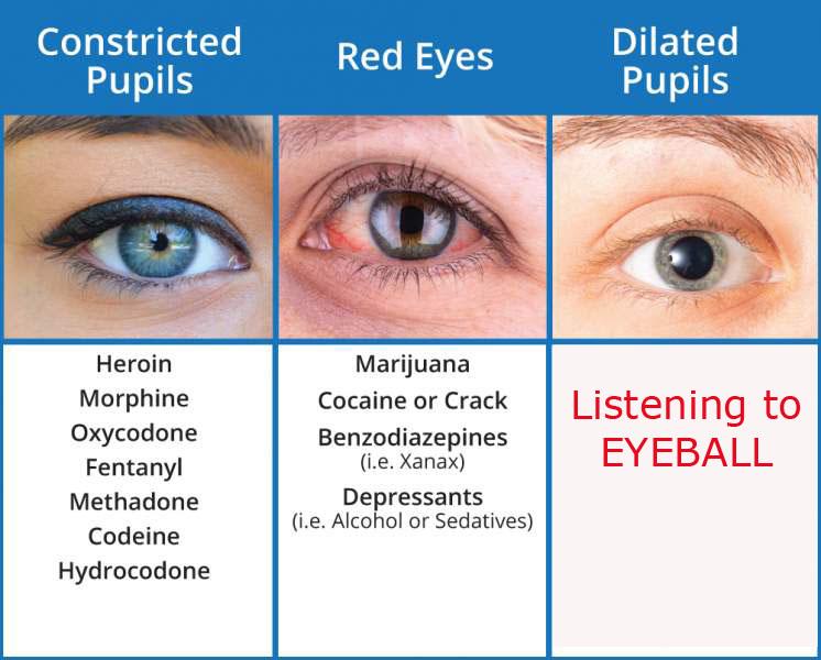 EYEBALL pupil dilation.jpg