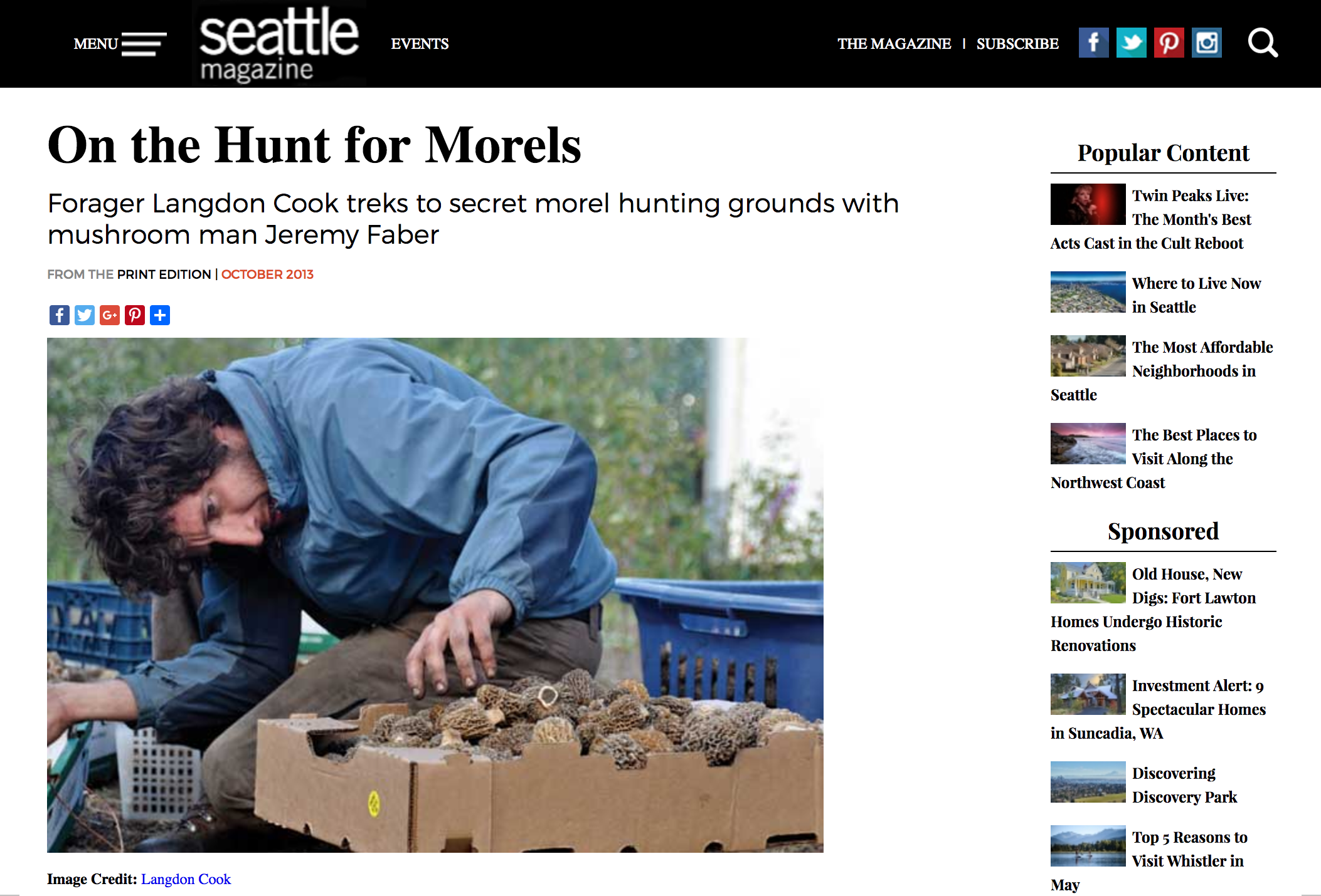Seattle Met:  On the Hunt for Morels