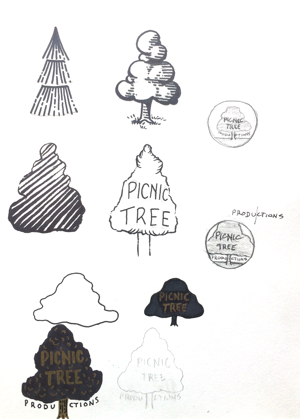 austin-saylor-max-trees