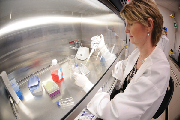 Patilee Tate works under the tissue-culture hood, source: Clemson.edu
