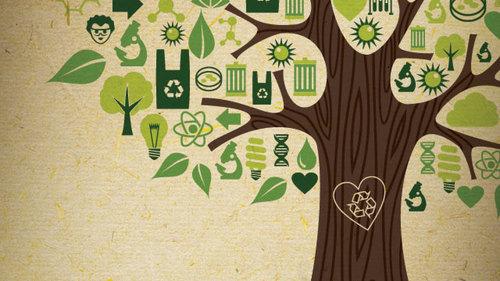 Green Lab Build UChicago Labconscious.jpg