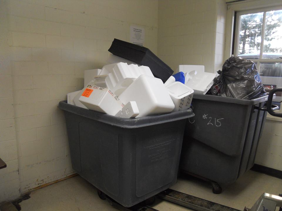 Collection at Medical Science Building