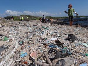 microplastics beach .jpg