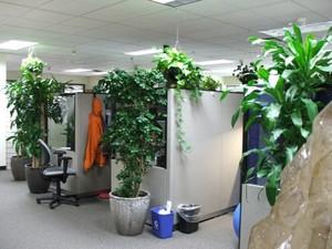 Labconscious Sustainability Office.jpg