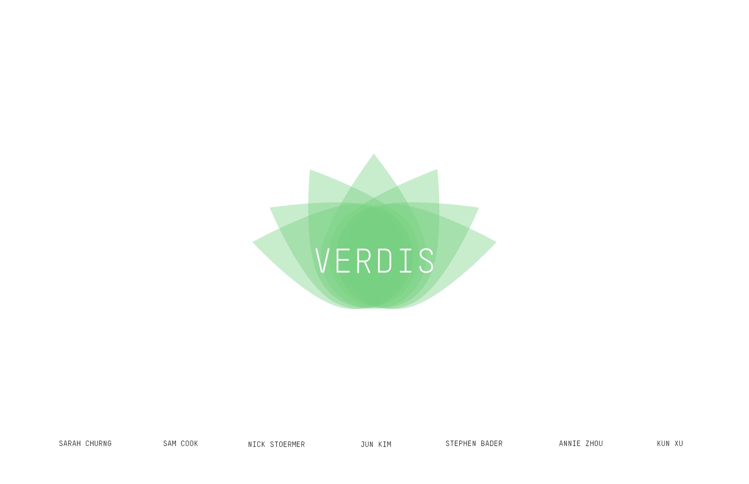 VERDIS Documentation_页面_01.png