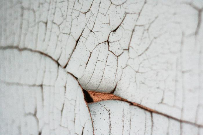 _MG_0507_v2-blog.jpg