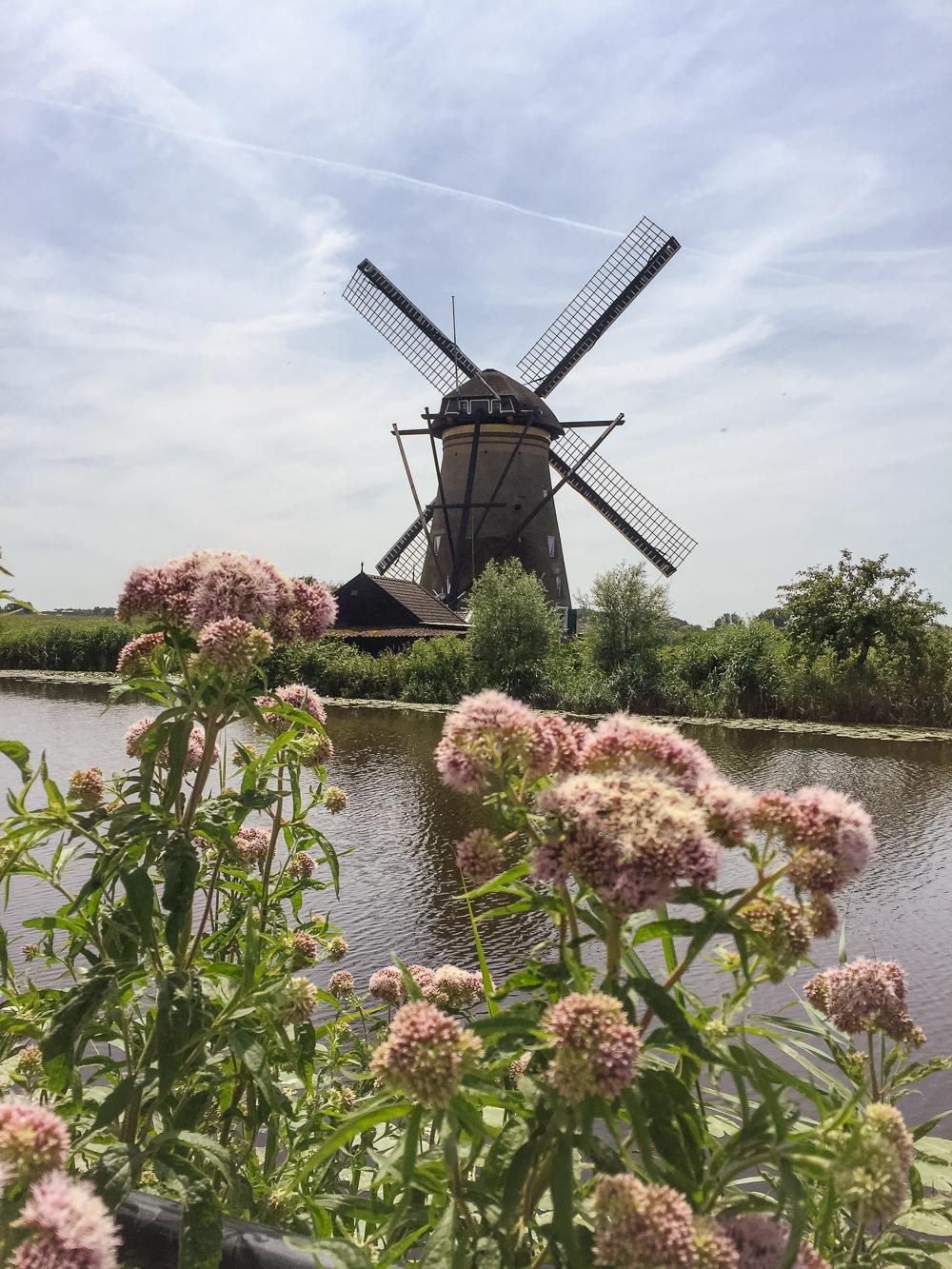 The windmills of Kinderdijk, Holland