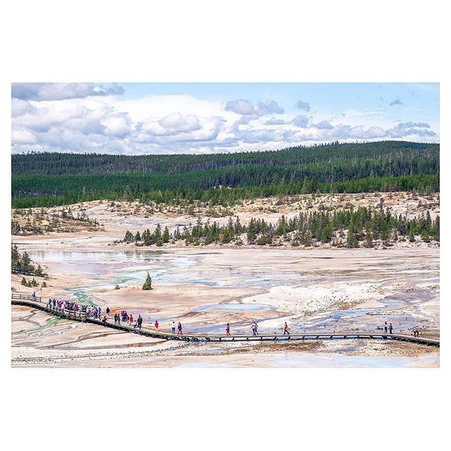 (Not) Abbey Road! . #walkwithlocals #Fujifeed #FujifilmX_US #NatGeoYourShot #YellowstoneNationalPark