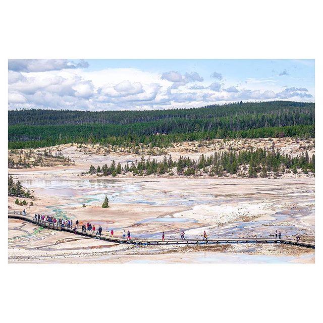(Not) Abbey Road! . #walkwithlocals #Fujifeed #FujifilmX_US #NatGeoYourShot #YellowstoneNationalPark