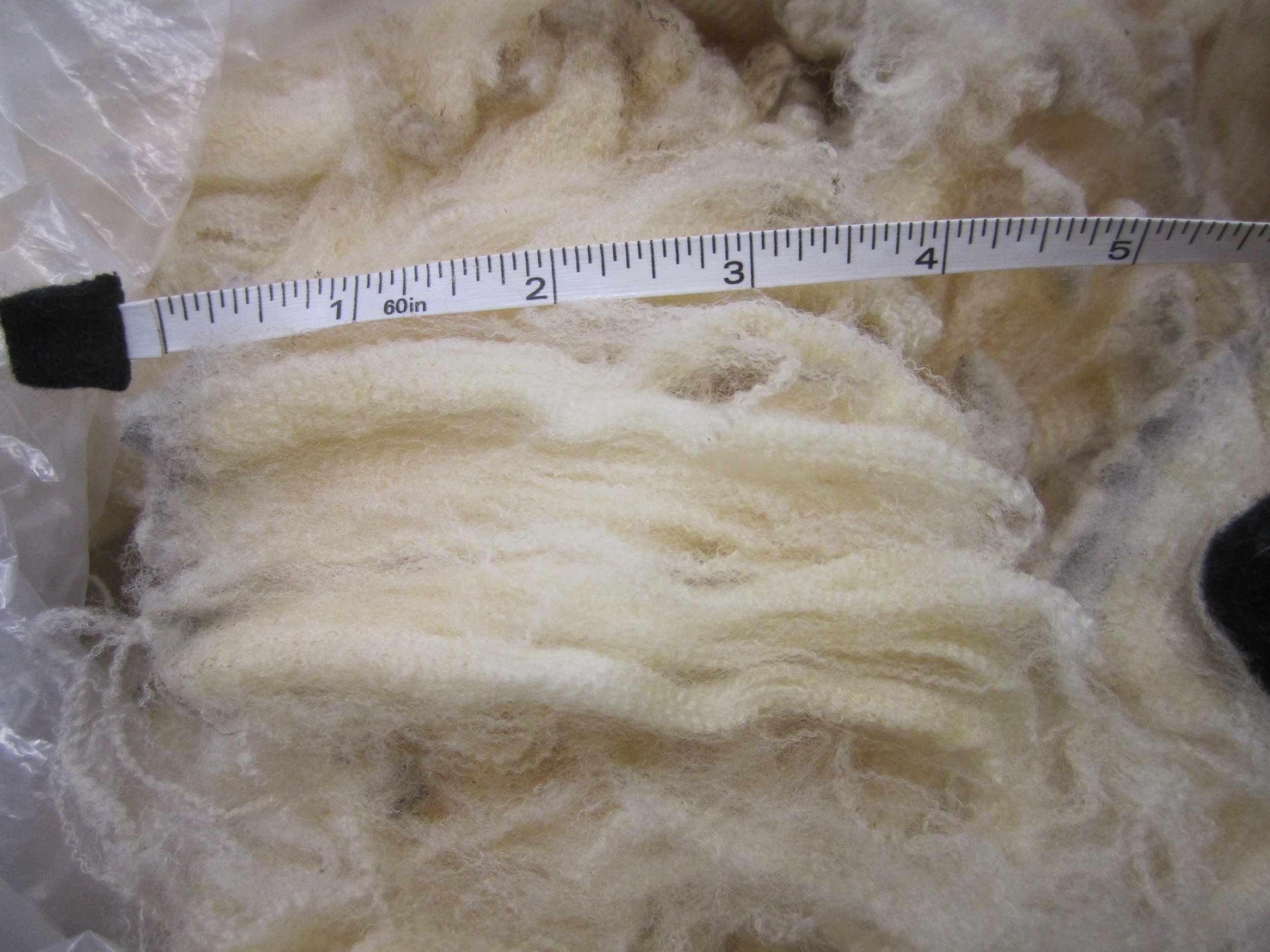 Cormo Fleece