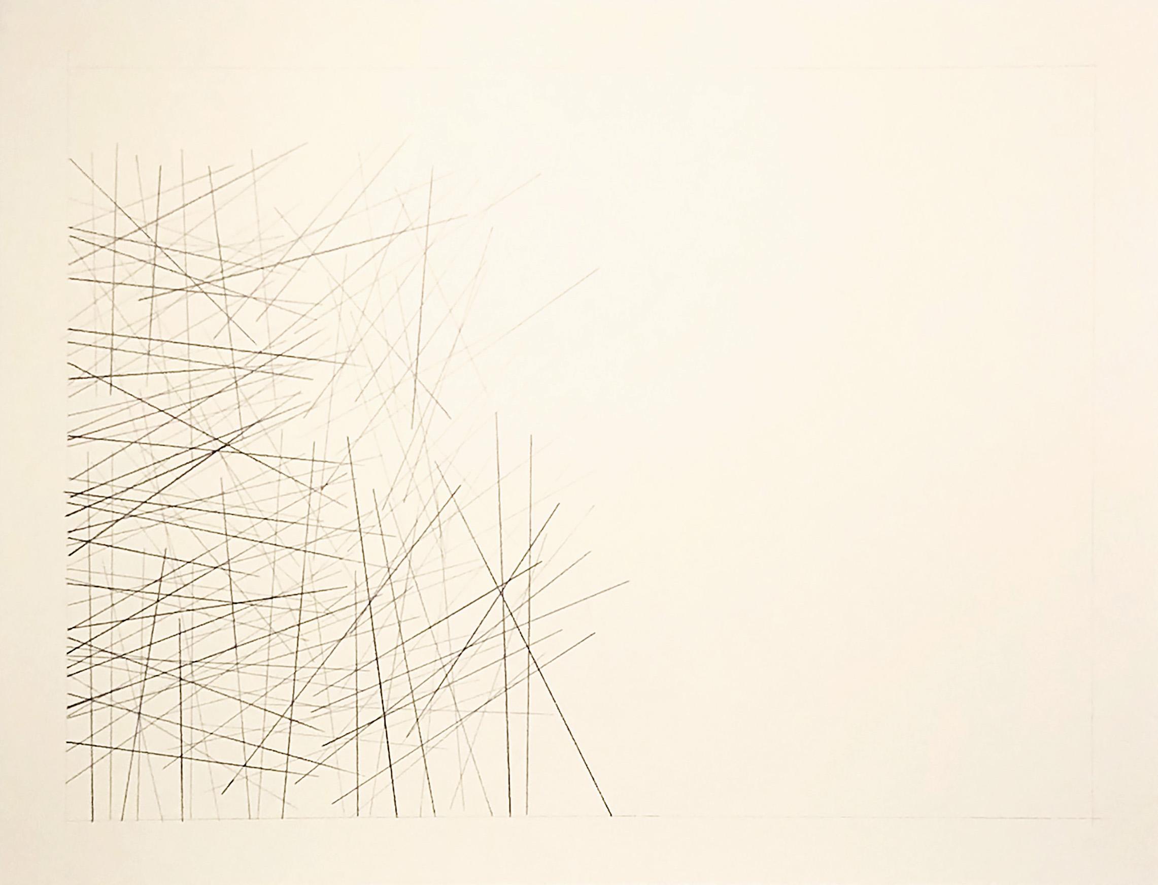 Coari, Brazil -4.0919, -63.0996,  2018  Graphite on paper  18H x 24W inches unframed  21.75H x 27.75W inches framed
