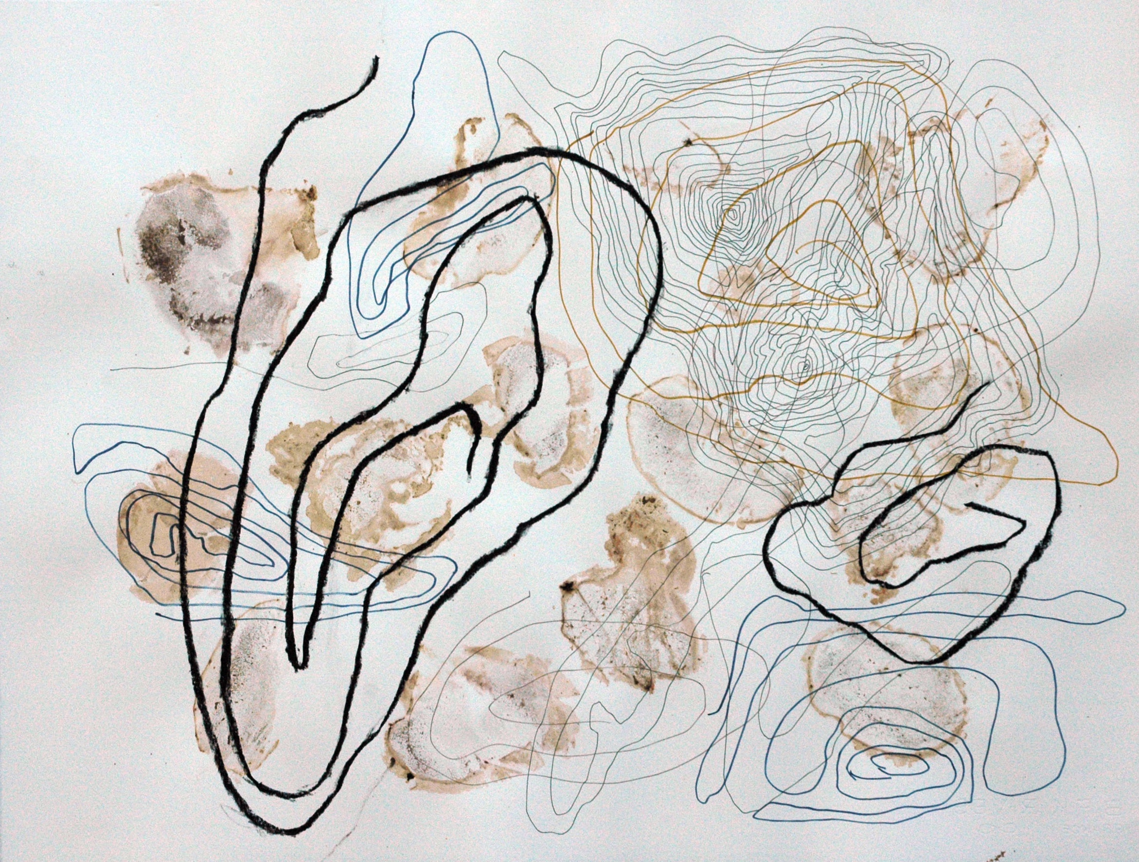 Wandering Number 3  , 2011 Fungi stains, mixed media 19 x 26 in.