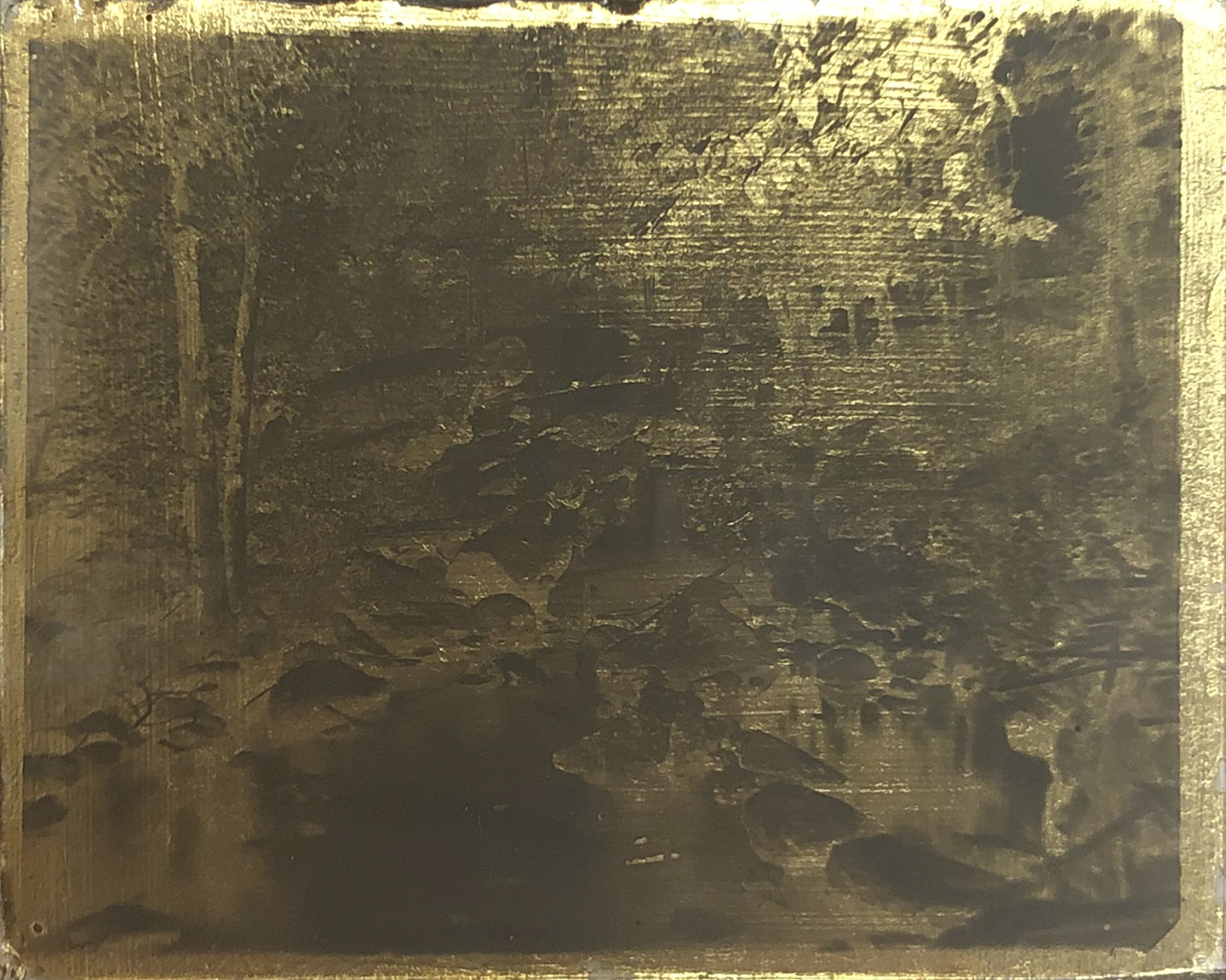 Nothing Gold Can Stay 8,  2019  Glass plate negative circa 1910 and gold leaf   4H x 5W inches
