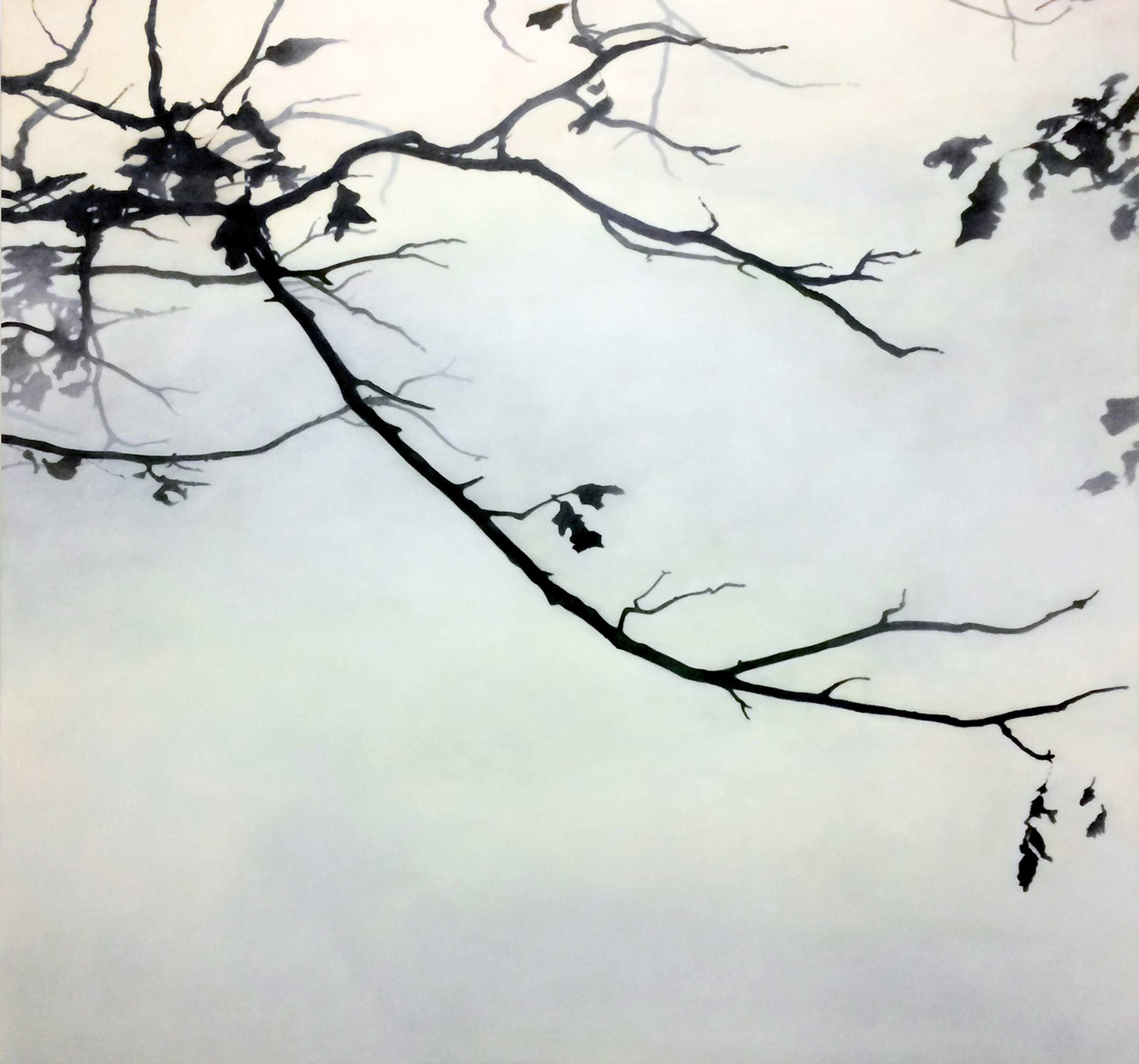 Fall Branches  , 2017  Vine charcoal, acrylic glazes on paper on cradled panel  53.5 x 54 in.