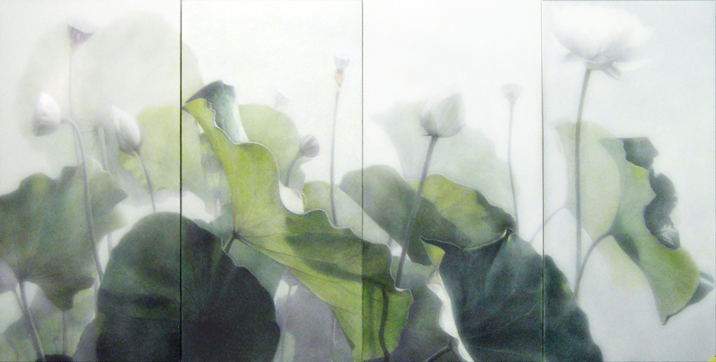 Lotus  , 2010  Vine charcoal, acrylic glazes on paper on panel  4 panels. 24 x 48 inches