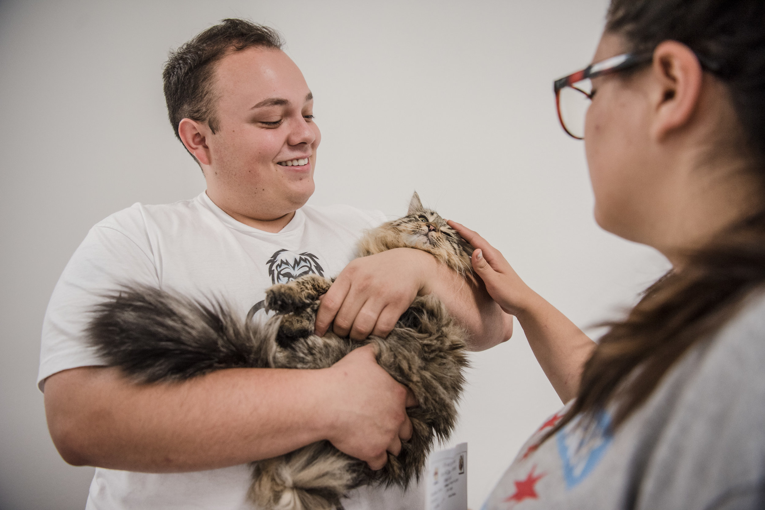 "New Las Vegas residents Adi and Francisco Martinez look to adopt a cat at Henderson Animal Care and Control Facility during ""Clear The Shelters"" day on Saturday, Aug. 19. 2017, in Henderson. Morgan Lieberman Las Vegas Review-Journal"