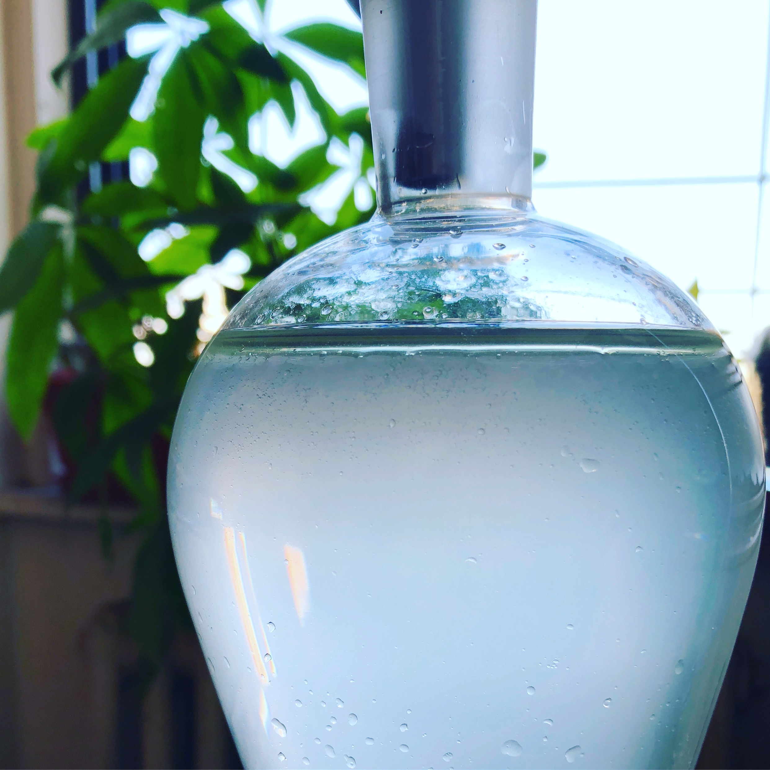 Vibrational AromaWater - 植物の波動が詰まった魔法のアロマ水で植物のエネルギーに触れてみませんか?